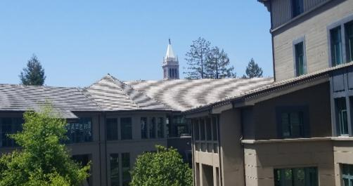 """can't see this image? imagine me taking a picture of Haas buildings while slowly sighing """"Go Bears"""" in the distance"""
