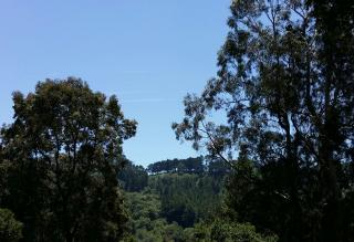 View from the lab toward Claremont Canyon